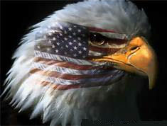 government eagle